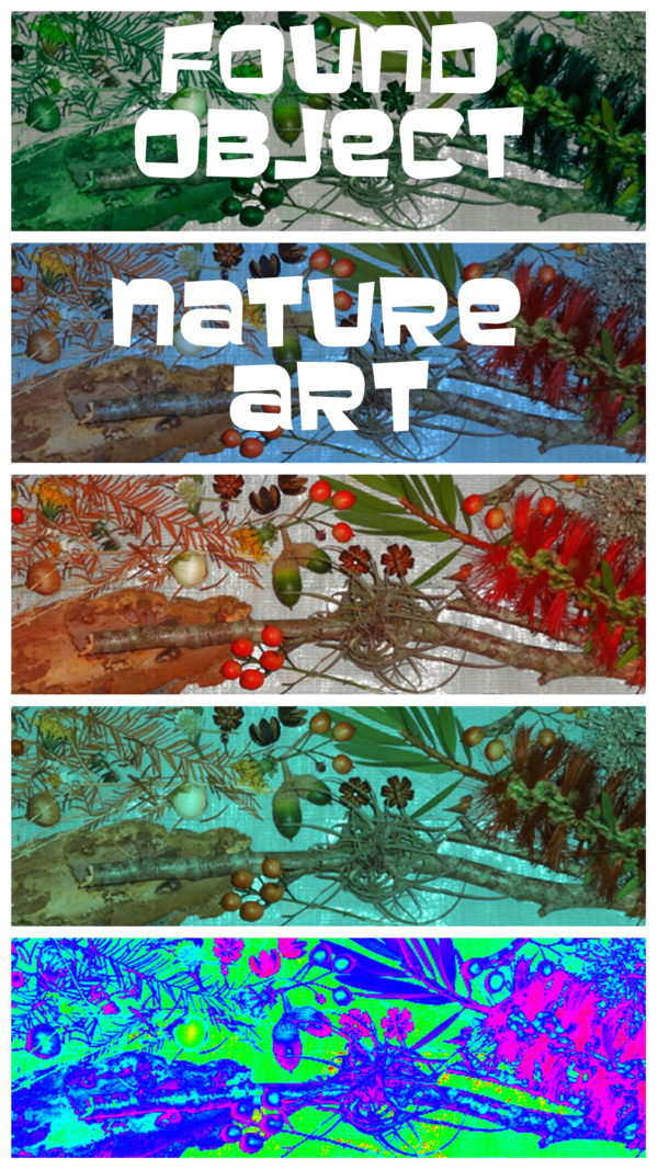 found object nature art