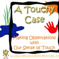 A Touchy Case: Making Observations with Our Sense of Touch