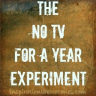 The No TV for a Year Experiment