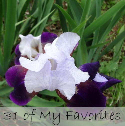 31 of my favorites