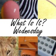 What Is It? Wednesday #4 {Pink & Purple Edition}