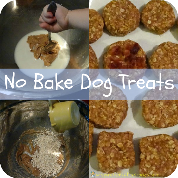 No bake dog treats - an act of friendship for furry friends #readforgood