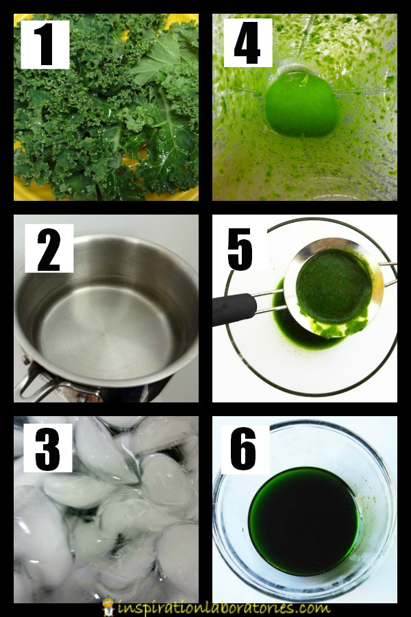 Halloween Science: Chlorophyll Extraction