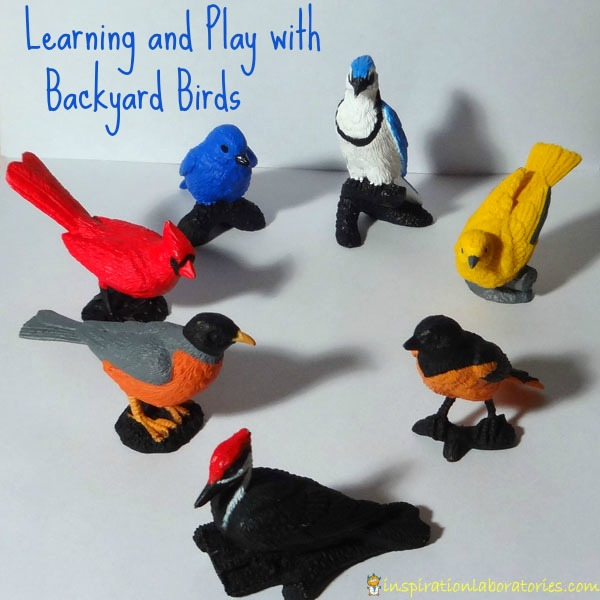 Learning and Play with Backyard Birds from Safari Ltd and a Giveaway