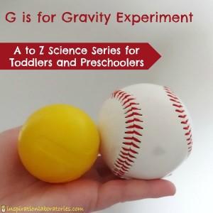 Gravity Experiment