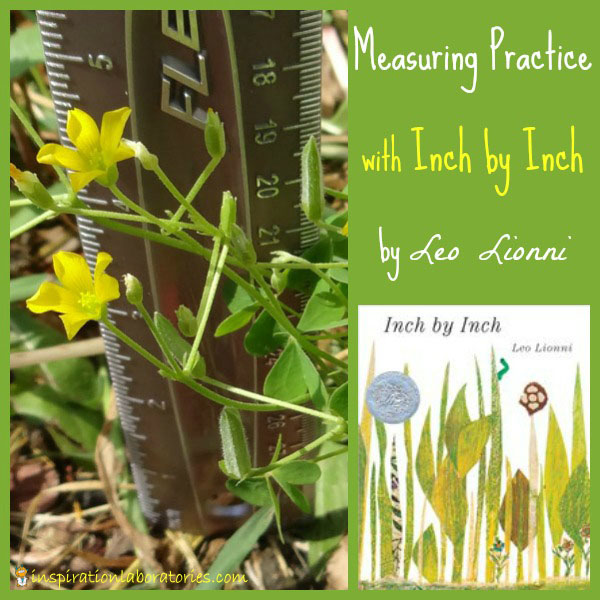 Measuring Practice with Inch by Inch by Leo Lionni