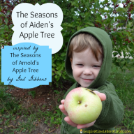 The Seasons of Arnold's Apple Tree by Gail Gibbons {Virtual Book Club for Kids}