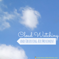 Cloud Watching & Observing Air Movement