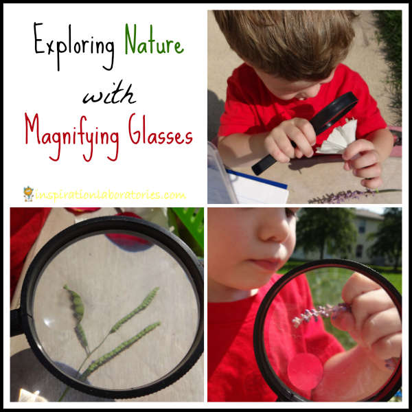 Exploring Nature with Magnifying Glasses