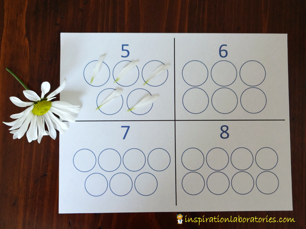 Counting Flowers with Number Circles
