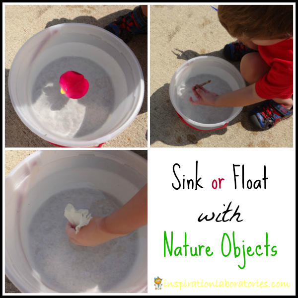 Sink or Float with Nature Objects