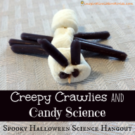 Creepy Crawlies & Candy Science