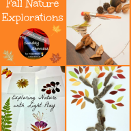 The Sunday Showcase - Fall Nature Explorations