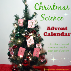 Christmas Science Advent Calendar: Christmas Star Classification