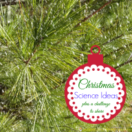 Challenge and Discover: Christmas Science