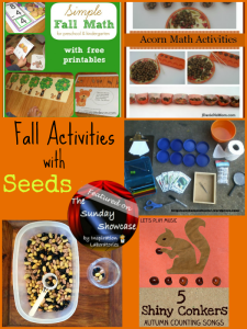 The Sunday Showcase - Fall Activities with Seeds