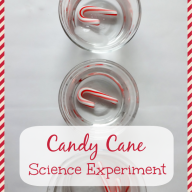 Candy Cane Science Experiment
