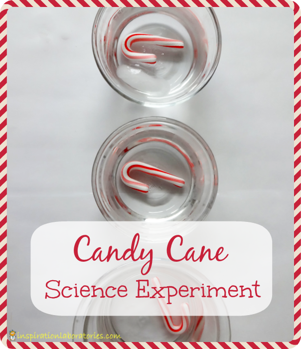 Candy Cane Science Experiment - Day 11 of our Christmas Science Advent Calendar