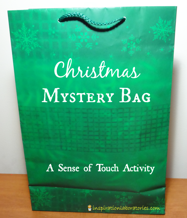 Christmas Mystery Bag - Day 19 of our Christmas Science Advent Calendar - Practice making observations with your sense of touch.