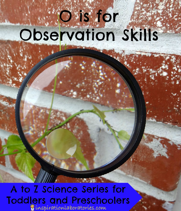 O is for Observation Skills - part of the A to Z Science Series for Toddlers and Preschoolers at Inspiration Laboratories