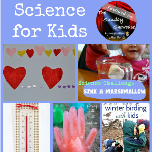 The Sunday Showcase - Science for Kids