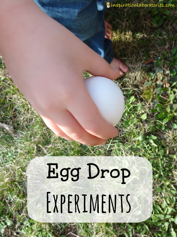 Egg Drop Experiments