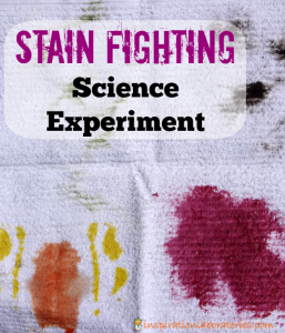Stain Fighting Science Experiment