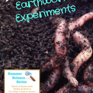 Backyard Earthworm Experiments {Summer Science Series}