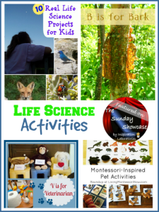 The Sunday Showcase - Life Science Activities
