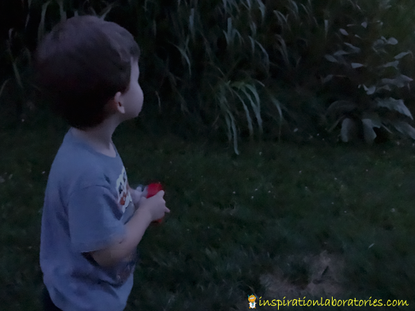 How to Attract Fireflies - learn tips for calling them in plus fun facts.