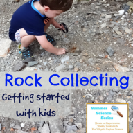 Rock Collecting {Summer Science Series}
