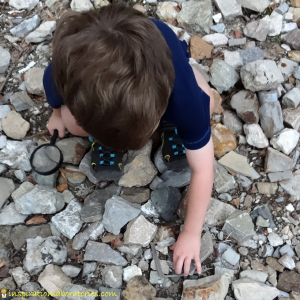 rock collecting2