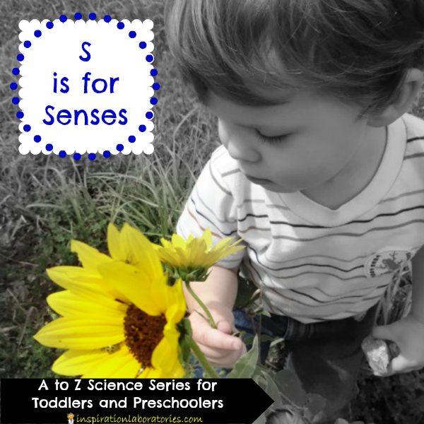 S is for Senses - part of the A to Z Science series for toddlers and preschoolers