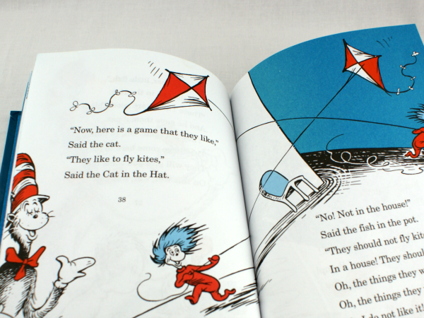 cat in the hat kites
