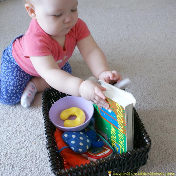 exploring the basket