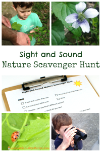 Sight and Sound Nature Scavenger Hunt
