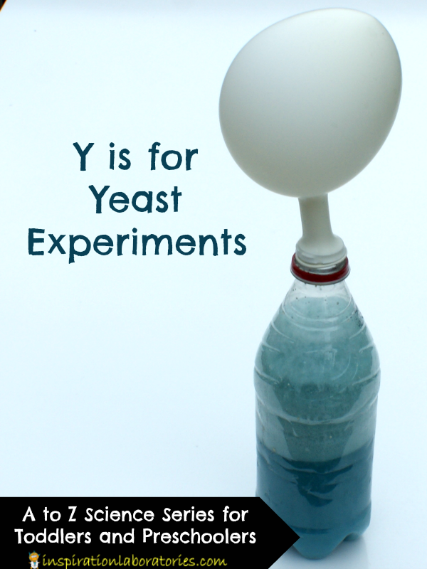 Y is for Yeast Experiments