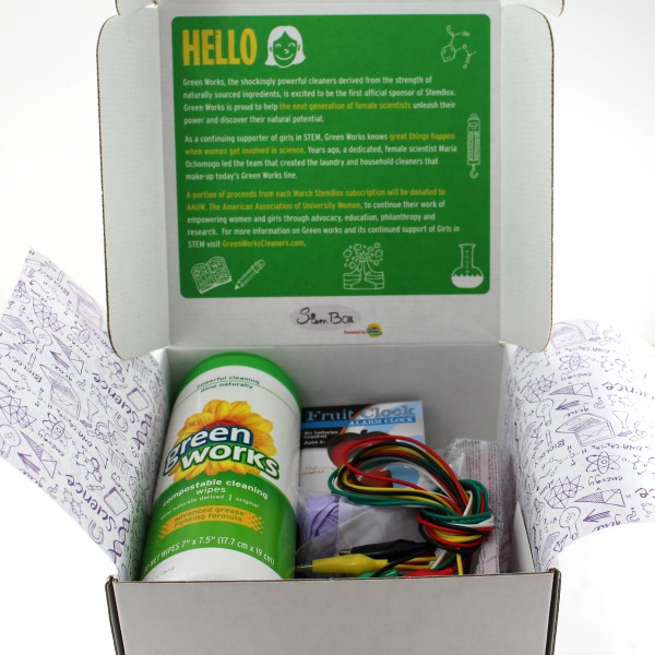 Build a lemon battery with the StemBox powered by Green Works