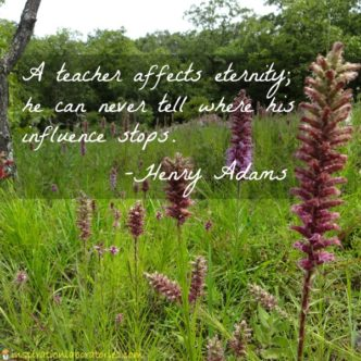 teacher quote by Henry Adams