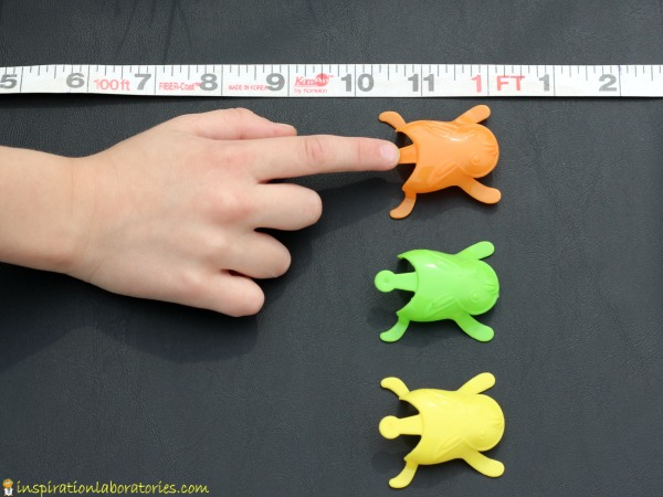 Use toy jumping bunnies for a fun measurement activity for kids.