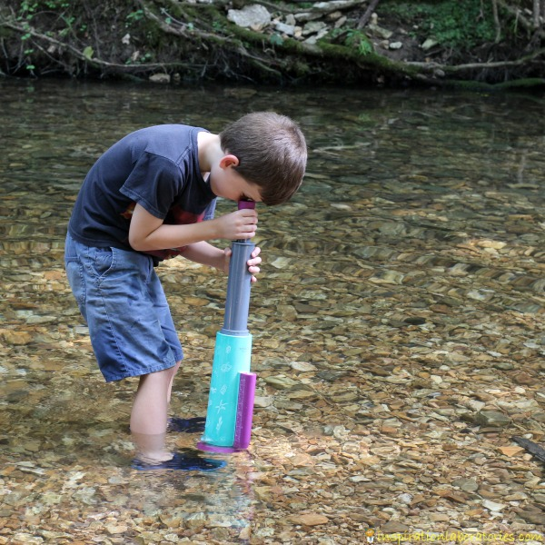 Use the Nancy B's Science Club AquaScope to explore under water.