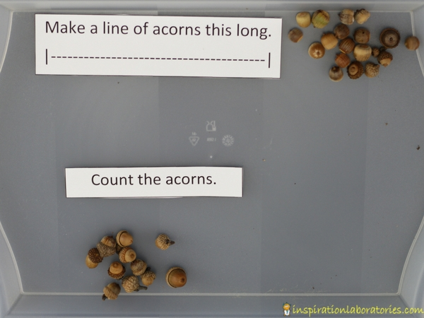 Work on preschool math skills at your acorn discovery table.