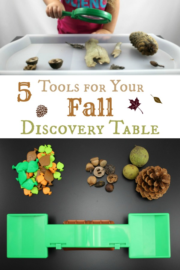 Add these 5 tools from Learning Resources to your fall discovery table. Post sponsored by #LearningResources
