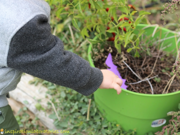 A simple bat treasure hunt is fun for toddlers too!
