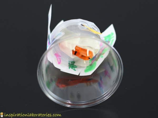 Make a turkey robot using a cup and hexbug.