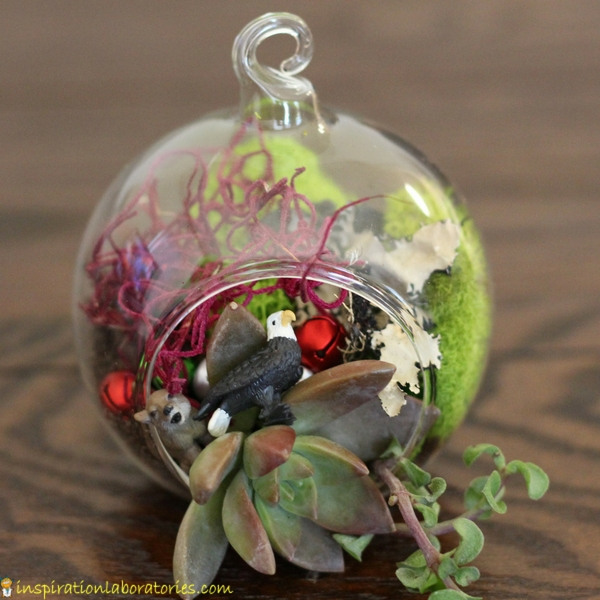A terrarium ornament makes a great Christmas gift.