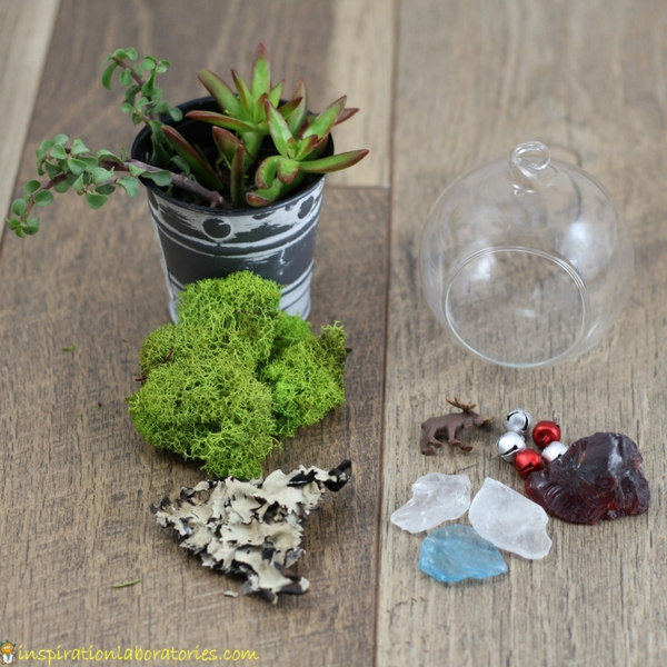 terrarium ornament supplies