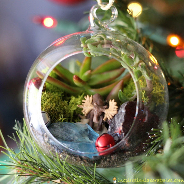 Make a Terrarium Ornament with Kids | Inspiration Laboratories
